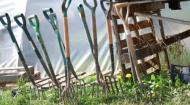 Forks at the Community Farm