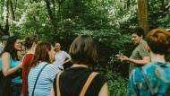foraging walk in the woods