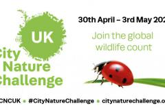 Join the global wildlife count!
