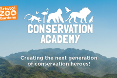 Bristol Zoo Gardens Zoo Conservation Academy