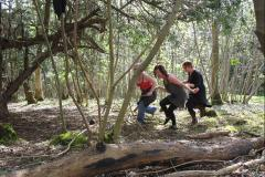 3 women playfully running through the woods, in the sunshine