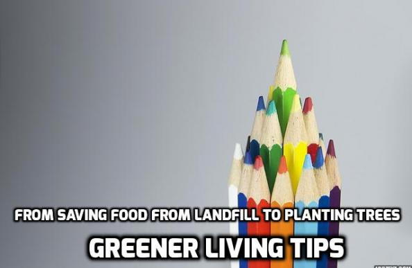 Greener living tips - landfill to trees