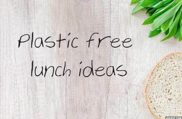 plastic free lunch ideas