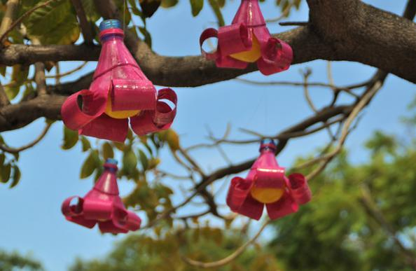 Upcycled bottle flowers - Upcycling/Crafting ideas for kids