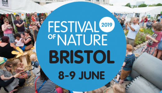 bristol festival of nature